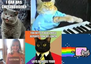 How to Create a Killer Meme