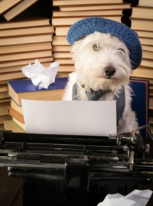 A Cover Letter for Freelancers: 5 Reasons Why You Still Need One