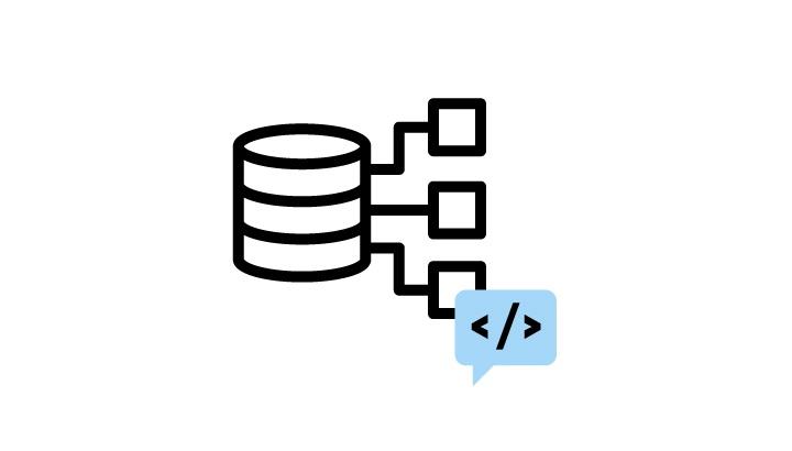 Database Developer